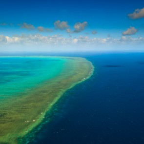 Great barrier reef In great big trouble