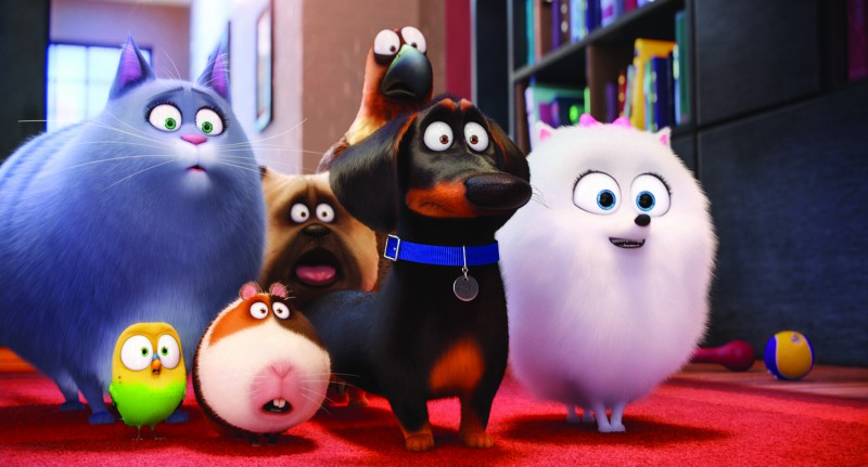All the pets in The Secret Life of Pets