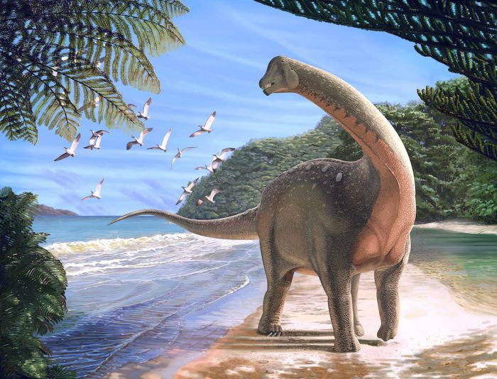 Mansourasaurus is an African dino-breakthrough