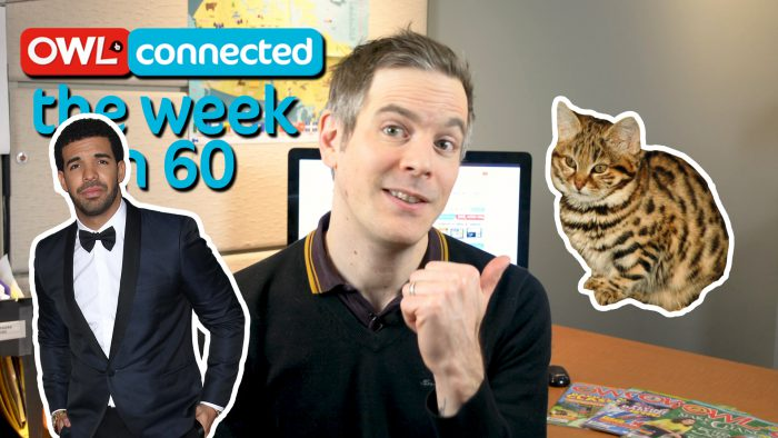 The Week In 60: Killer kitty, ozone hole, and Raptors come home