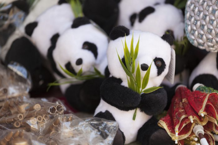 Panda triplets say Happy Chinese New Year with dumplings