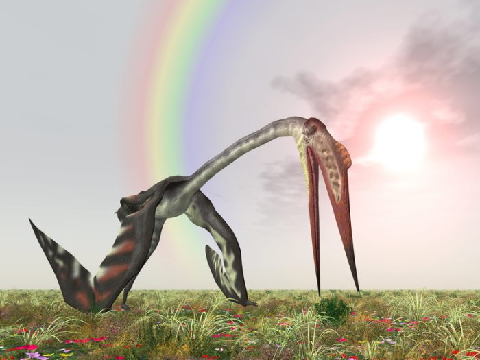 Biggest pterosaur ever discovered unveiled in Germany