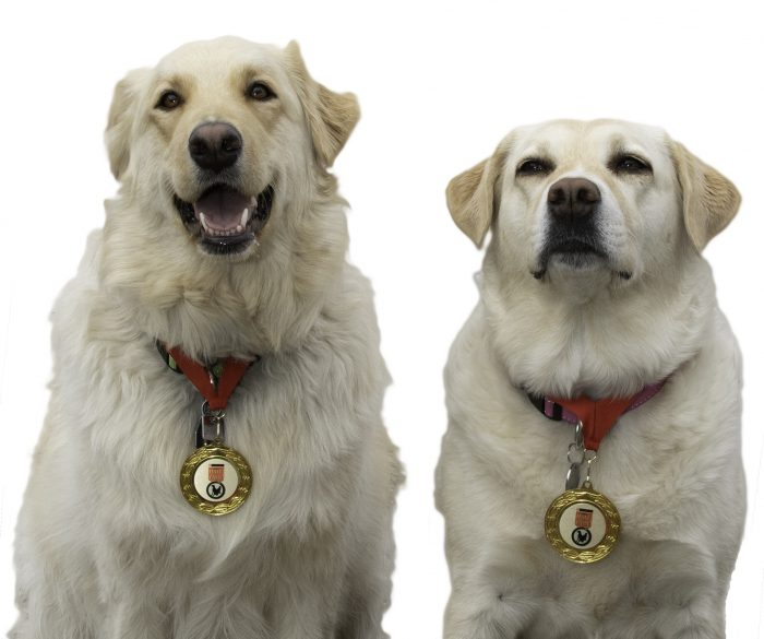 Purina Lady & Ruth - White with Medal