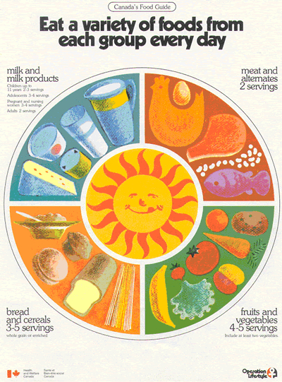 1977 food guide