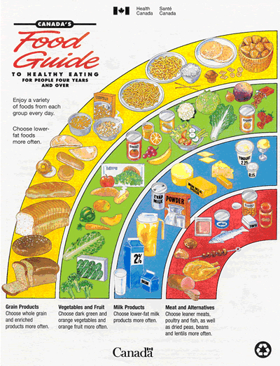 1992 food guide