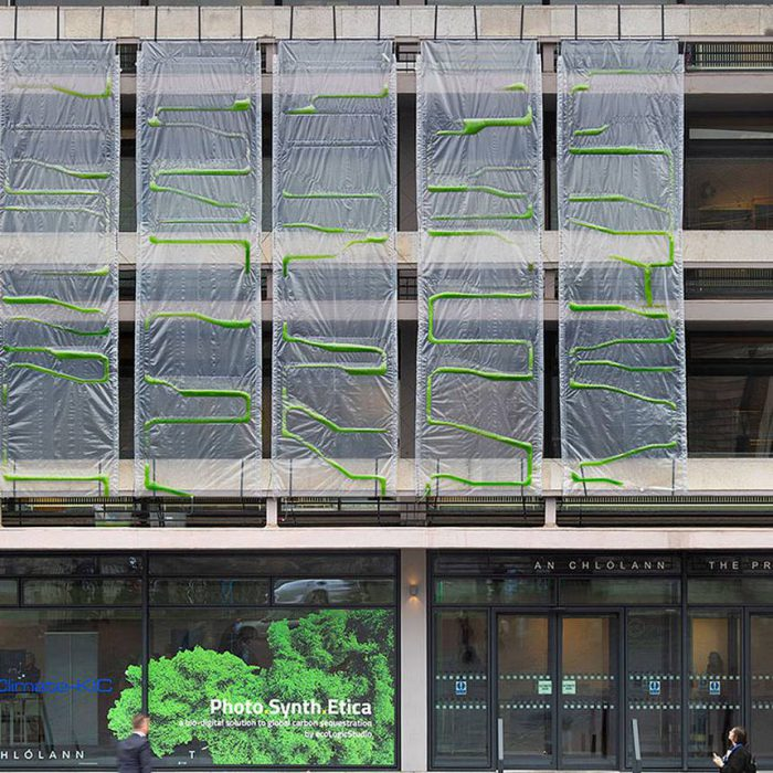 Could these algae curtains be the carbon-fighter of the future?
