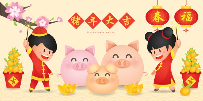 Cozy up with the Year of the Pig!