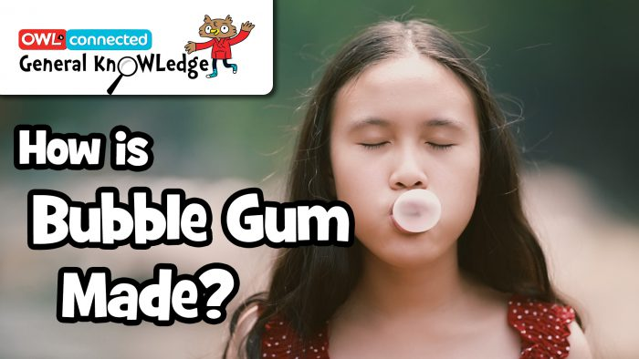 General KnOWLedge: How is bubble gum made?