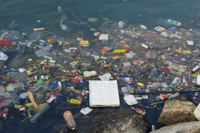 single-use plastics ban