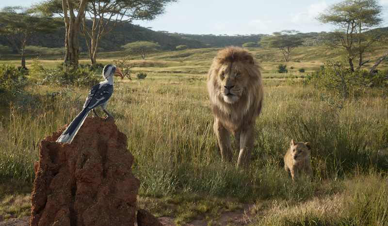 Movie Review The Lion King Owl Connected
