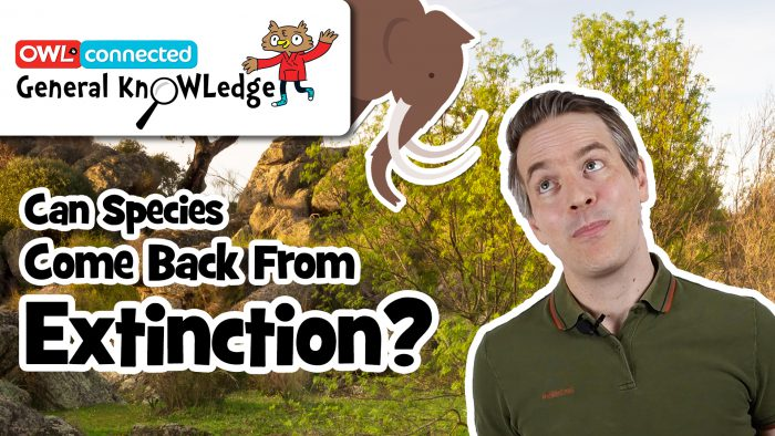 General KnOWLedge: Can species come back from extinction?