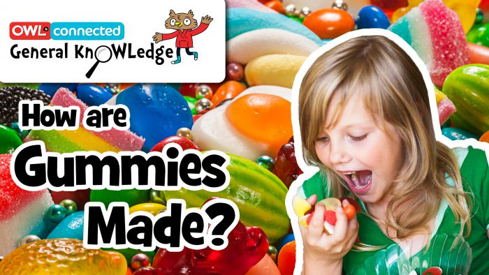 General KnOWLedge: How are gummies made?