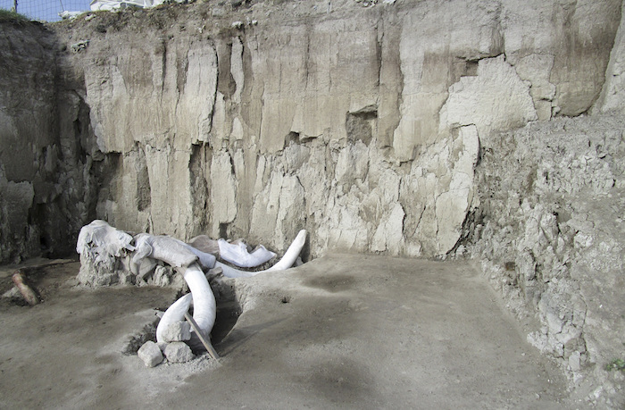 Prehistoric mammoth traps discovered in Mexico