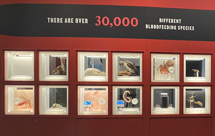 Bloodsuckers take over Toronto museum!