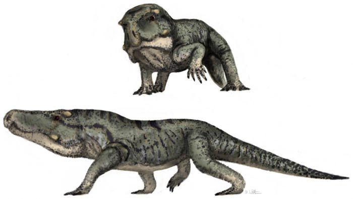 Check out these big-headed Triassic predators