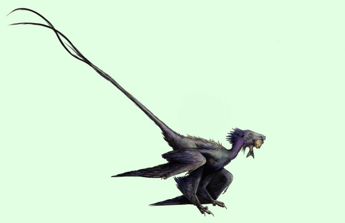 New feathered dinosaur was one fancy-looking kid