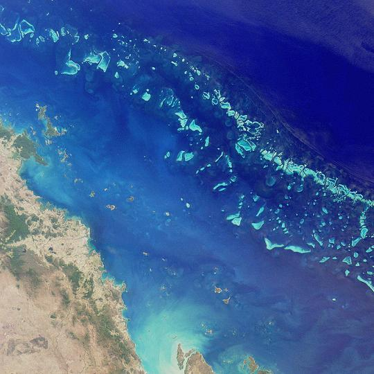 Great Barrier Reef hit by new coral bleaching