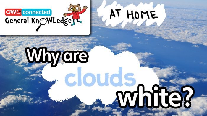 General KnOWLedge At Home: Why are clouds white?