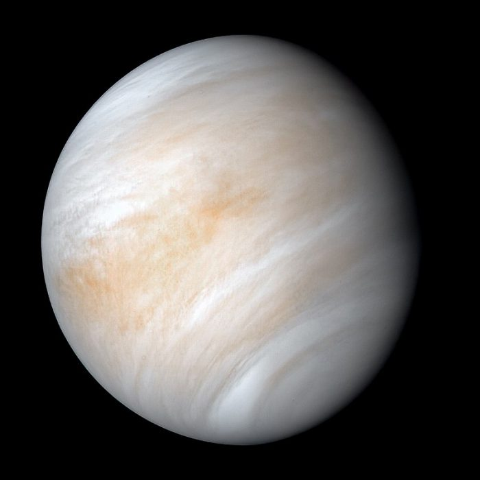 Is there life in the clouds of Venus?