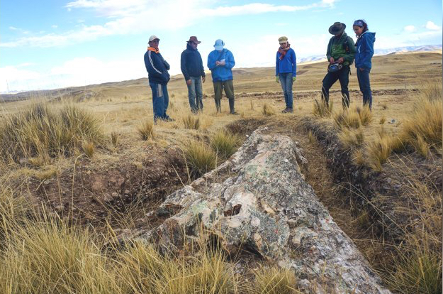 Huge 10-million-year-old tree fossil found in Peru