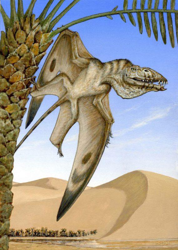 Caelestiventus-hanseni pterosaur