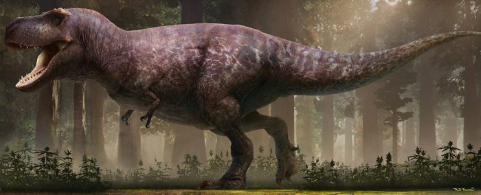 chubby t. rex