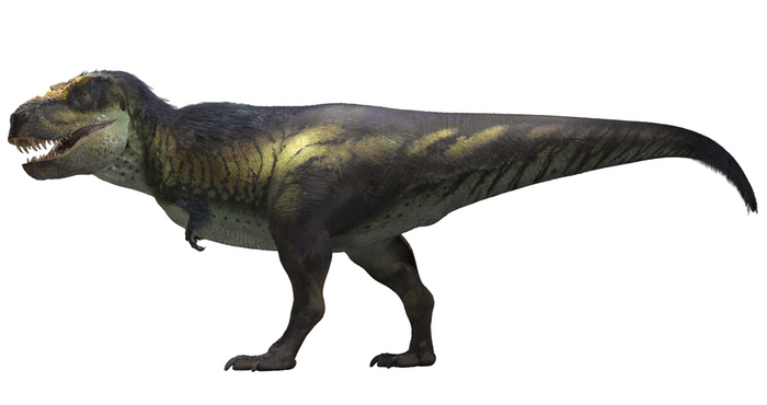 Victoria the T. rex