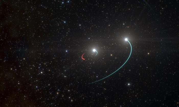 HR 6819 closest black hole