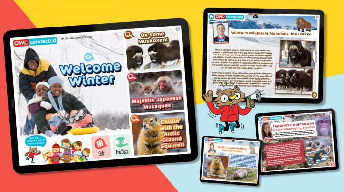 Issue 110 of OWLconnected's eMag is winter happy!