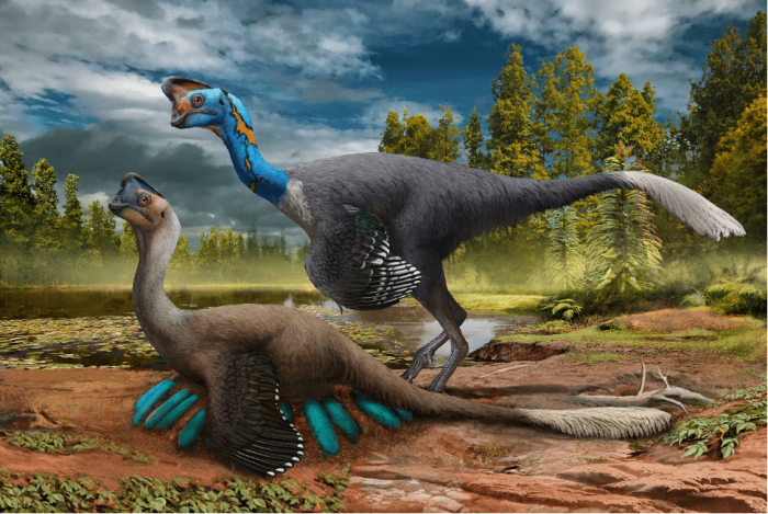 Fossil of dinosaur sitting on eggs found