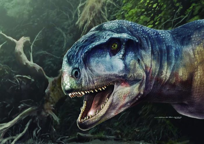 The fear is here! New dinosaur predator found in Argentina