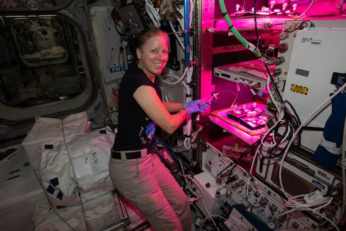 Unknown microbes found on the ISS