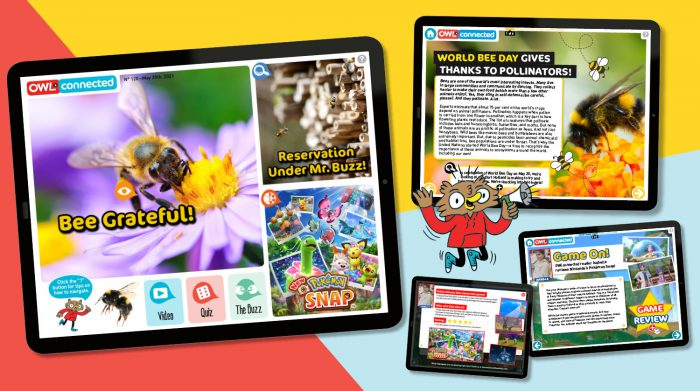 Bee-hold! It's issue 120 of the OWLconnected eMag